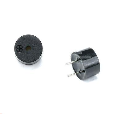0955 Passive Buzzer Ultrathin Small Electromagnetic 9*5.5MM
